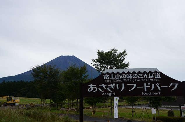 DSC_5296.JPG