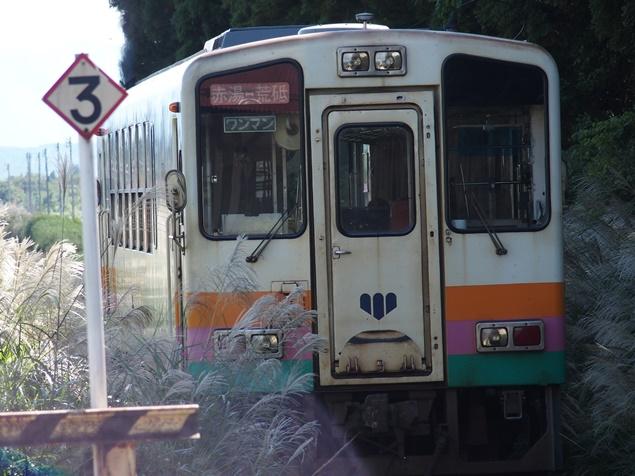 P9100783.JPG